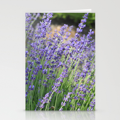 lavender_card