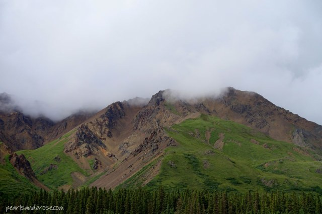 denali_greenery_web