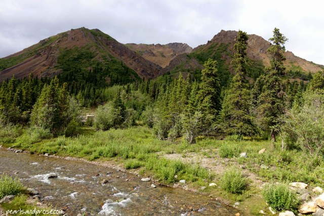 denali_river_bank_web