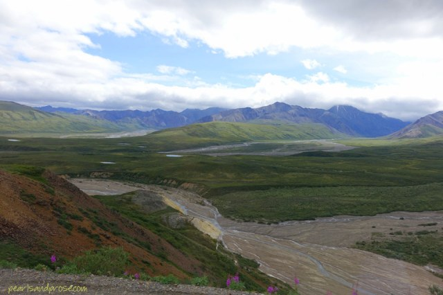 denali_swaths_web