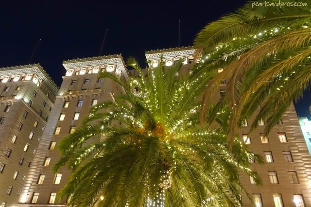 SF_union_hotel_palms_web